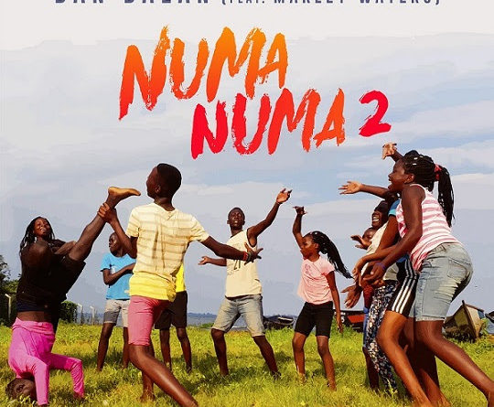 Dan Balan - Numa Numa 2