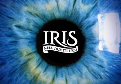 Iris lansează un nou single: Un alt format